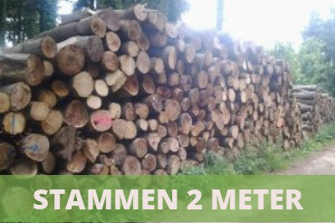 brandhout stammen 2 meter