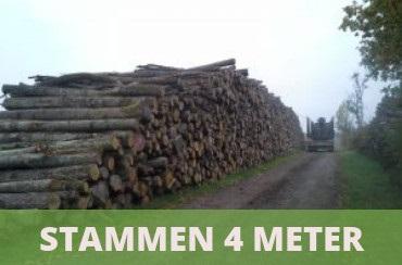 brandhout stammen 4 meter