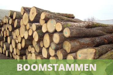 boomstammen
